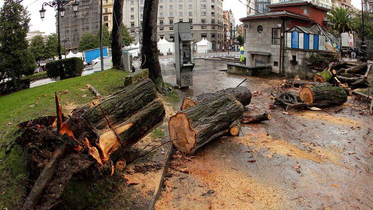 Des arbres tombés du fait de la tempête Bruno, à Oviedo (Espagne), le 27 décembre 2017. (MAXPPP)