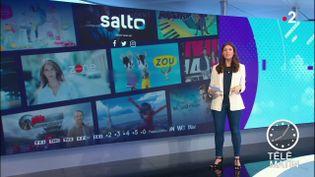 Plate-forme Salto (France 2)