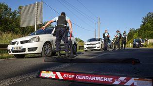 Des gendarmes dans le secteur du Lardin-Saint-Lazare, pendant la traque du forcené, le 31 mai 2021. (THIBAUD MORITZ / AFP)