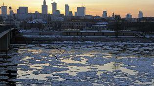 Pologne, Varsovie, le 30 janvier 2012. (JANEK SKARZYNSKI / AFP)