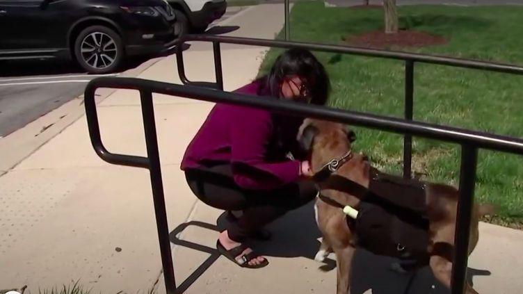 Aux États-Unis, la co-fondatrice d'un magasin de vin a mis son chien à contribution pour pouvoir continuer à travailler durant le confinement. (Capture d'écran franceinfo)