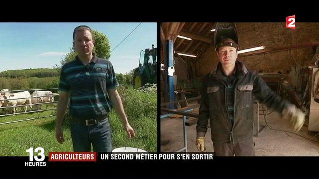 Agriculteurs : un second métier pour s'en sortir finanicèrement