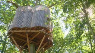 Si les bords de mer restent les lieux privilégiés des vacances des Français, certains préfèrent le confort perché dans les arbres, à plusieurs mètres de hauteur. La proximité avec la nature est très recherchée cet été, comme à Raray dans l'Oise. (France 2)