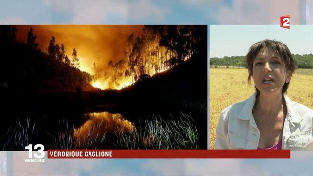 Incendie meurtrier au Portugal : des renforts européens envoyés sur place