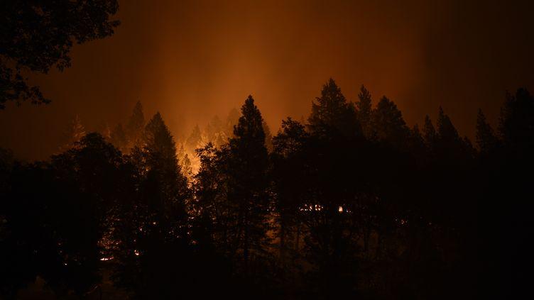 L'incendie Dixie Fireillumine le ciel pendant la nuit à Taylorsville, en Californie (Etats-Unis), le 11 août 2021. (NEAL WATERS / ANADOLU AGENCY / AFP)