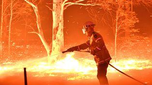 Un pompier lutte contre les flammes le 31 décembre dans la banlieue de Nowra, enNouvelle-Gallesdu Sud. Samedi 4 janvier 2020,3 000 réservistes de l'armée ont étéappelés pour prêter main forte à ces soldats du feu volontaires exténués.  (SAEED KHAN / AFP)