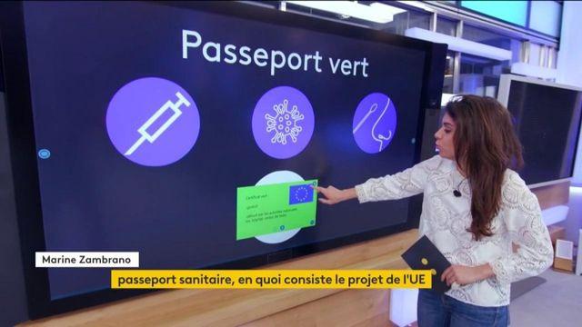 Covid-19 : un passeport sanitaire pour pouvoir circuler au sein des pays l'Union européenne ?
