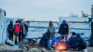 """Des migrants se réchauffent près d'un feu de bois, le 25 décembre 2015, dans la """"jungle"""" de Calais (Pas-de-Calais). (STEPHANIE LECOCQ / EPA / AFP)"""