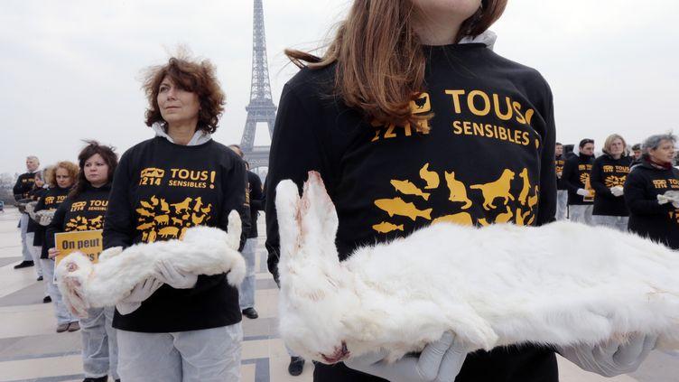 Des militants de l'association L214 portent des lapins morts pour protester contre leur élevage intensif, sur la place du Trocadéro, à Paris, le 27 mars 2013. (JACQUES DEMARTHON / AFP)