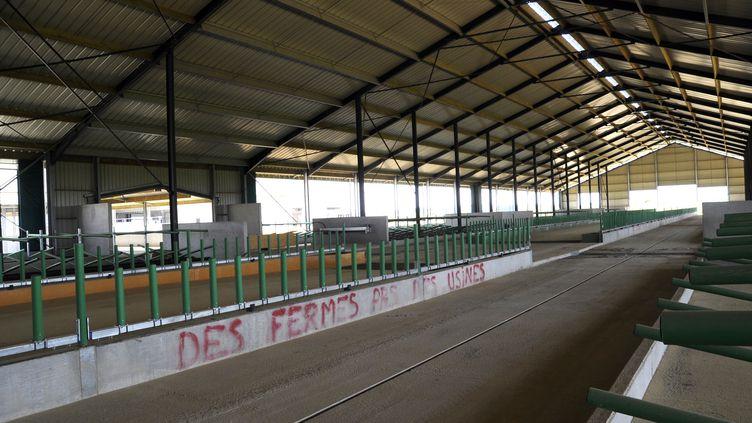 """""""Des fermes, pas des usines"""" : graffiti à l'intérieur de la """"Ferme des mille vaches"""" à Abbeville. (FRANCOIS LO PRESTI / AFP)"""