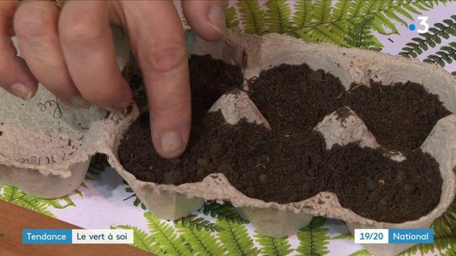 Tendance : la nouvelle passion pour jardinage, même en appartement