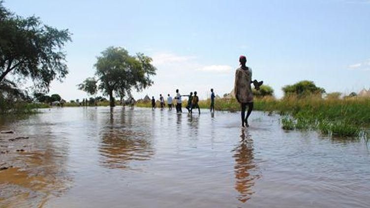 Réfugiés sud-soudanais dans le sud de l'Ethiopie, le 16 octobre 2014. (AFP - Jacky Fortin)