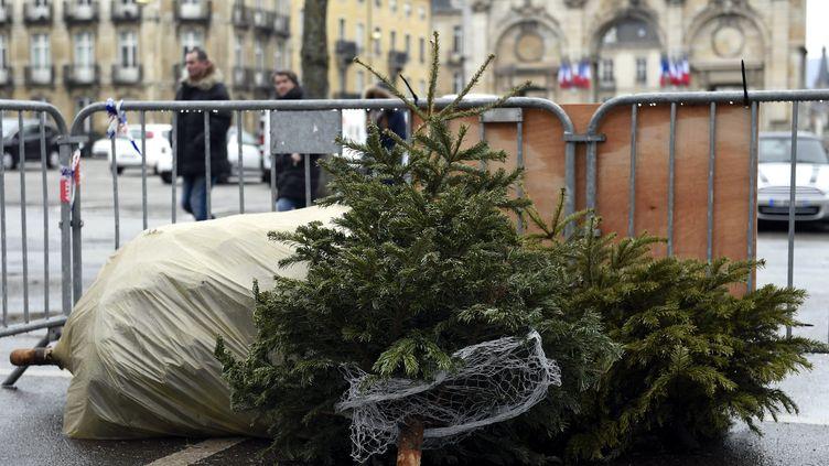 Un point de collecte de sapins de Noël à Nancy (Lorraine), le 2 janvier 2016. (MAXPPP)