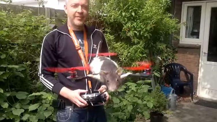 Capture d'une vidéo montrant un rat transformé en drone. (PRICORDIA / YOUTUBE)