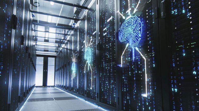 Les data centers ou serveurs numériques consomment 10 à 15% de l'électricité mondiale. (GORODENKOFF PRODUCTIONS/SCIENCE / GPR)