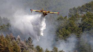 Un Canadair survole un incendie pourtenter de l'éteindre, à Palneca, en Corse, le 3 août 2017. (PASCAL POCHARD-CASABIANCA / AFP)