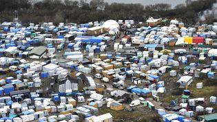 """La """"jungle"""", le camp de migrants de Calais (Pas-de-Calais), le 23 février 2016. (FRANCK DUBRAY / MAXPPP)"""