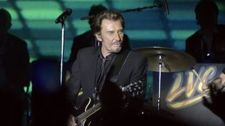 Johnny Hallyday au concert des Vieilles Canailles à Bercy, le 6 novembre 2014  (Sipa)