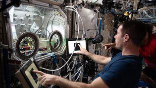 L'astronaute Thomas Pesquet de l'agence spatiale européenne dans son studio-laboratoire de recherches scientifiques, à bord de l'ISS le 9 juillet 2021. (NASA / MAXPPP)