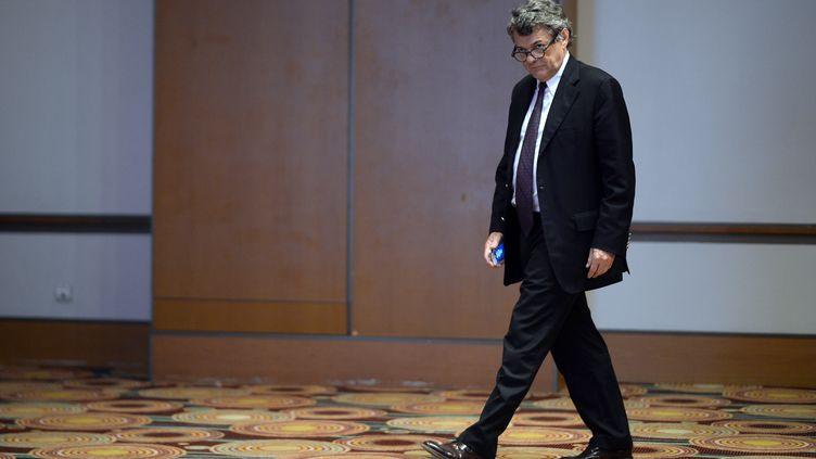 Le président de l'UDI, Jean-Louis Borloo, le 18 janvier 2014 à Paris. (MARTIN BUREAU / AFP)