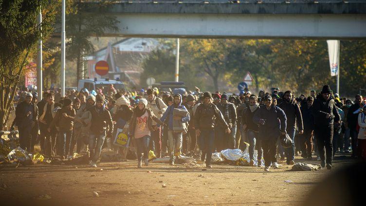 Des migrants courent pour franchir la frontière entre la Slovénie et l'Autriche, à Sentilj (Slovénie), le 3 novembre 2015. (RENE GOMOLJ / AFP)