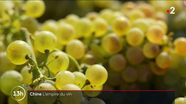 Routes du vin : en Chine, des cépages aux origines françaises