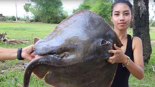 Ah Lin Tuchet son mari Phoun Raty ont cuisiné des espèces protégées. (NATURAL LIFE TV)
