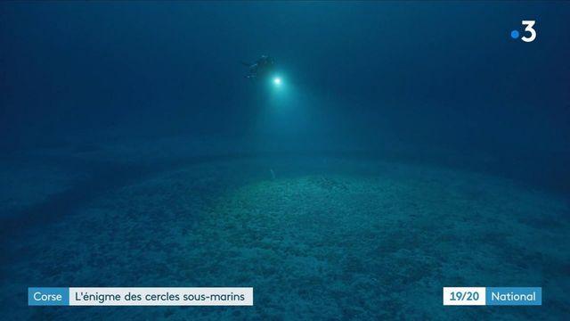 Corse : le mystère des cercles sous-marins