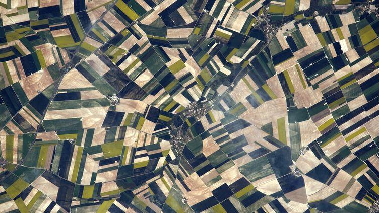 Photo aérienne des champs de Picardie prise par Thomas Pesquet à bord de la Station spatiale internationale. (THOMAS PESQUET / ESA / NASA)