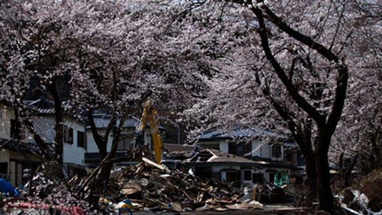 Dans la ville de Kamaishi, le 20 avril 2011 (AFP. Yasuyoshi Chiba)