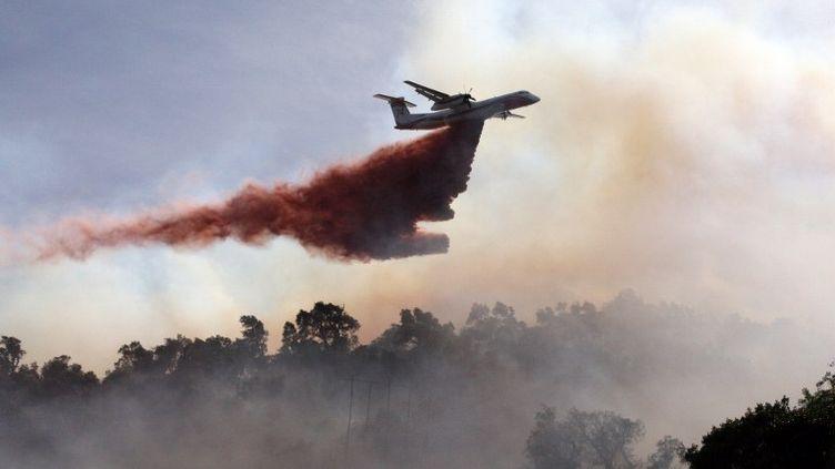 Un canadair lâchant de l'eau sur le feu de forêt qui s'est déclaré au Perthus, à la frontière franco-espagnole, le 22 juillet 2012. (RAYMOND ROIG / AFP)