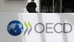 Le siège de l'Organisation de coopération et de développement économiques (OCDE) à Paris, le 29 mai 2013. (ERIC PIERMONT / AFP)