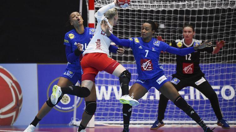 L'Euro 2020 de handball féminin devait se tenir en Norvège et au Danemark, du 3 au 20 décembre 2020. (CHARLY TRIBALLEAU / AFP)