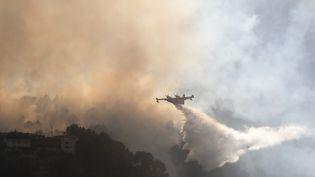 Un Canadair largue de l'eau au-dessus d'un incendie près de Carros (Alpes-Maritimes), le 24 juillet 2017. (VALERY HACHE / AFP)