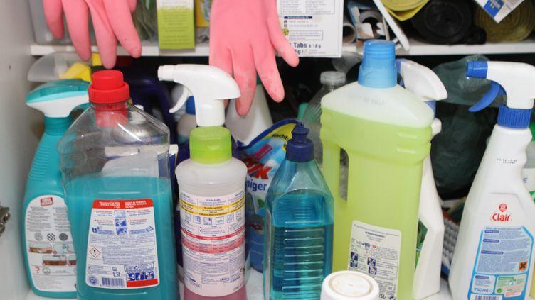 Des subtances toxiques dans les produits ménagers (photo d'illustration). (JEAN-FRANCOIS FREY / MAXPPP)