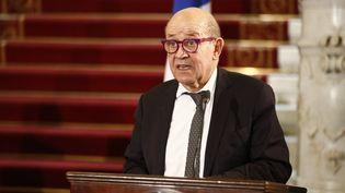 Jean-Yves Le Drian s'exprime lors d'une conférence de presse au Caire (Egypte), le 11 janvier 2021. (KHALED DESOUKI / AFP)