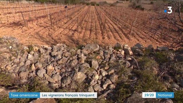 Taxe Trump : un nouveau coup dur pour les viticulteurs français