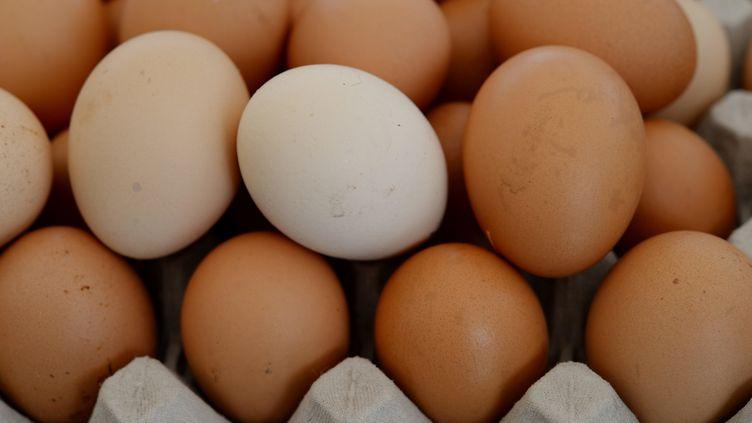 """Le ministère allemand de l'Agriculture a estimé dans un communiqué """"qu'au moins trois millions d'œufs contaminés"""" en provenance des Pays-Bas avaient été livrés en Allemagne. (FRANK MAY / PICTURE ALLIANCE / AFP)"""