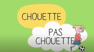 """""""Série pour les 4-6 ans """"Chouette, pas chouette"""". En 16 épisodes. (CAPTURE D'ECRAN YOUTUBE)"""