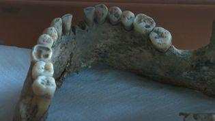 Découverte d'un squelette (Capture d'écran France3)