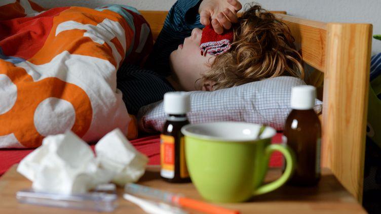 Chaque année,2,5 millions de Françaiscontractent le virus de la grippe. (FRANK MAY / PICTURE ALLIANCE / AFP)