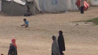 Le gouvernement français envisage le retour des jihadistes français en Syrie. (CAPTURE D'ÉCRAN FRANCE 2)