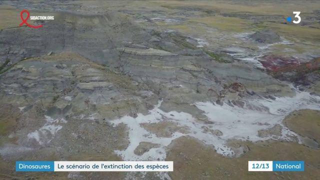 Dinosaures : de nouvelles découvertes sur la disparition des espèces