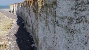 Normandie : les falaises de craie menacées par l'érosion (France 3)