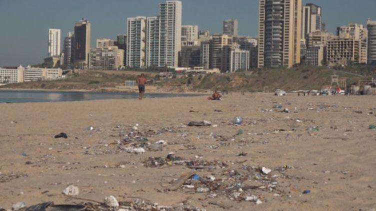 Beaucoup de Libanais réclament des mesures pour protéger l'environnement. mais avec l'instabilité politique, la crise des déchets perdure dans le pays (France 24)