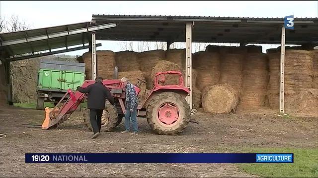 Gers : un Samu social agricole pour venir en aide aux éleveurs