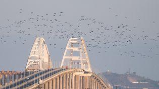 Le pont de Kertch en Crimée qui sépare la mer Noire de la mer d'Azov. (ALEXEY MALGAVKO / SPUTNIK)