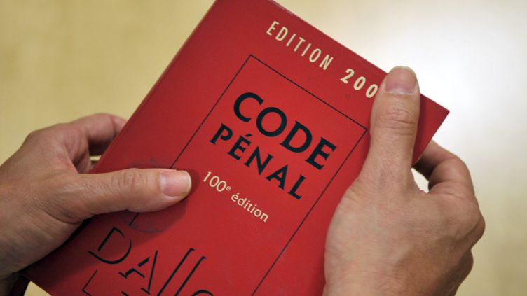 """Une proposition de loi supprimant le mot """"race"""" du Code pénal, du Code de procédure pénale et de la loi du 29 juillet 1881 sur la liberté de la presse a été adoptée à l'Assemblée en mai 2013. (ERIC PIERMONT / AFP)"""