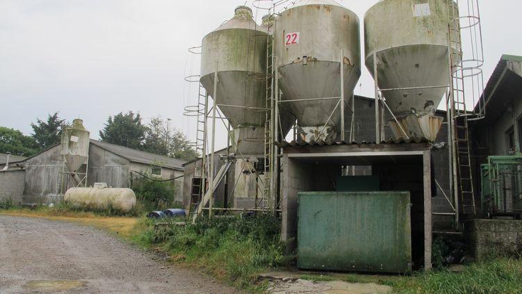L'élevage de porcs d'Emmanuel Rault, àQuintenic (Côtes-d'Armor), jeudi 11 juin 2015. (F. MAGNENOU / FRANCETV INFO)