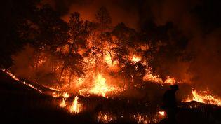Pompier luttant contre le feu Mendoncino Complex Fire, en Californie le 01 août 2018. (MARK RALSTON / AFP)